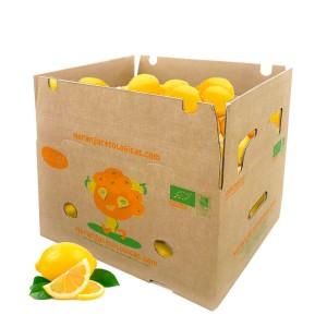 10 kg de citrons